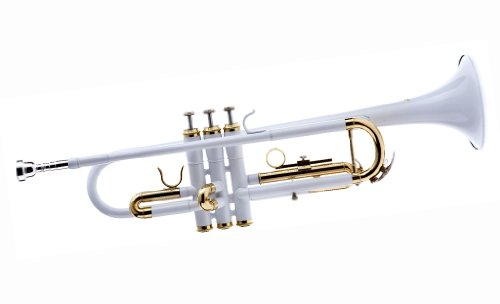 best student trumpets reviews