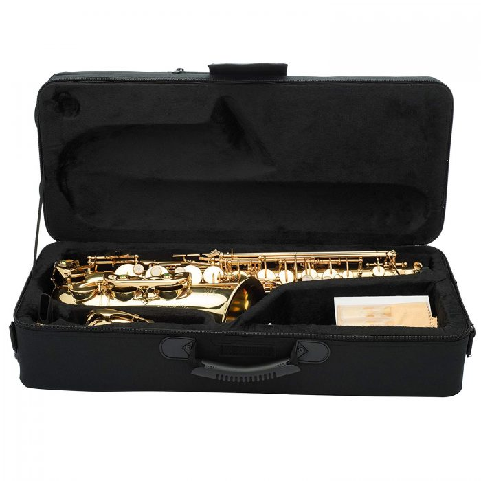 Top 6 Best Alto Saxophones On The Market 2020 Reviews