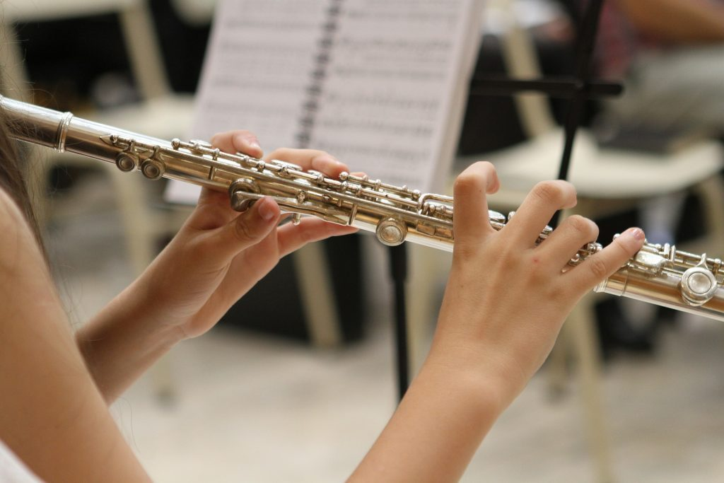 Top 8 Best Student Flute You Should Buy 2021 Reviews & Buying Guide
