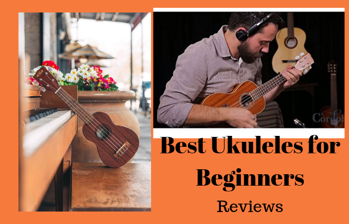 Top 10 Best Ukuleles for Beginners in 2020 Reviews