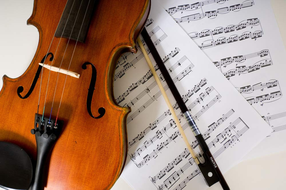 Vio Music Carbon Fiber Bass Bow Natural Black Horse Hair French 1//2