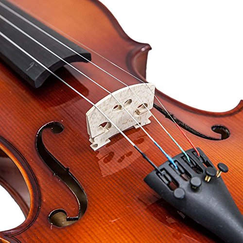student violin reviews