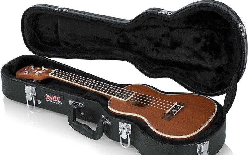 ukulele case