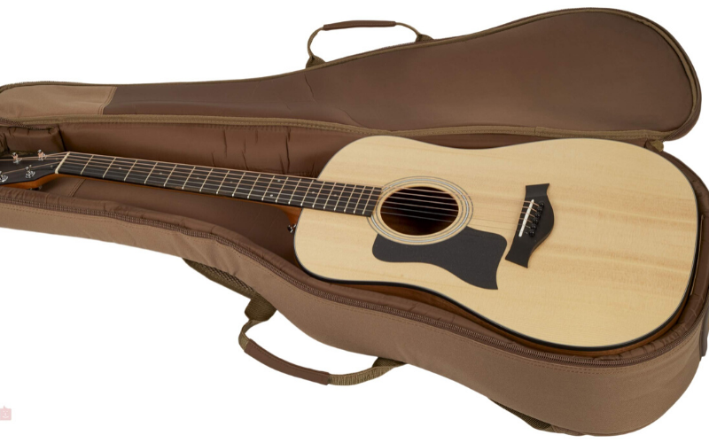 Taylor 110e Review – A Great Dreadnought Guitar!