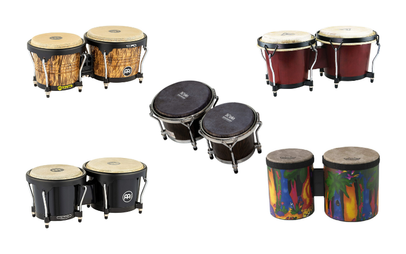 Top 5 Best Bongos For All Budgets In 2021 Review