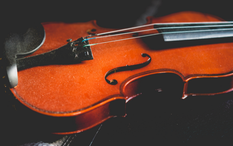 Torn Between Two Strings: Violin or Viola – What's the difference?
