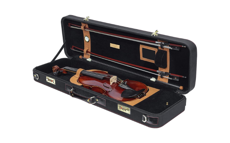Violin Case Buyer's Guide – Must Read before Buying
