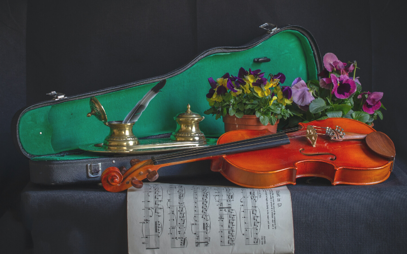Violin Cases Perform a Function