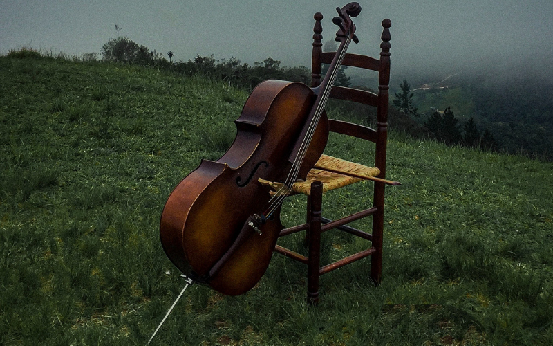 The Cello is Different