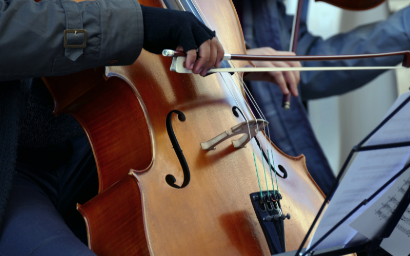 Do's And Don'ts For Beginning Cellists