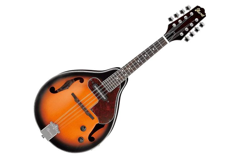 The Mandolin vs. Similar Stringed and Strummed Instruments