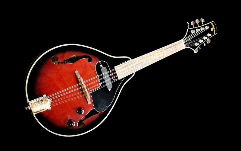 What is a Mandolin Guitar?